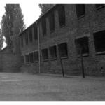 774_Auschwitz_barrack
