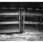 774_Auschwitz_bunks