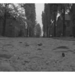 774_Auschwitz_street